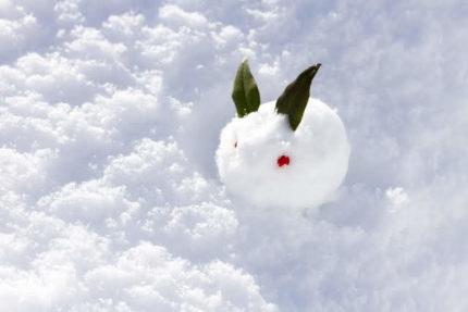 冬・雪のイメージ