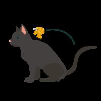 猫にノミが付く