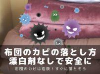 布団カビ落とし方-アイキャッチ