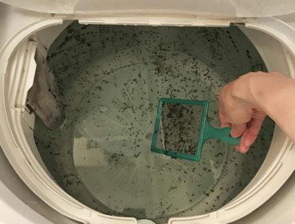 酸素系漂白剤で洗濯機のカビ取り