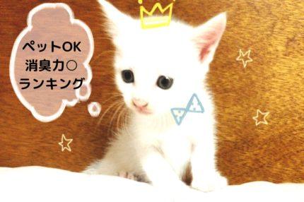 王冠した猫「ペットOK・消臭力丸ランキング」」