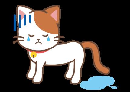 猫のストレス・粗相