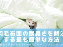 羽毛布団の獣臭さ・鳥臭さを解決する!最も簡単な方法~いい香りで安眠できる-アイキャッチ
