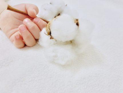 赤ちゃんの手に握られているコットンフラワー